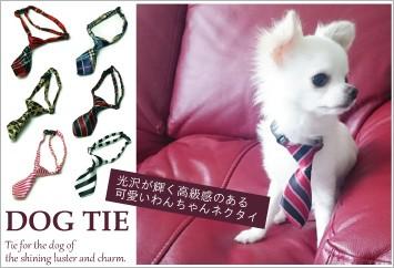 光沢が輝く高級感のある可愛いわんちゃんネクタイ「ドッグ・ネクタイ」バナー