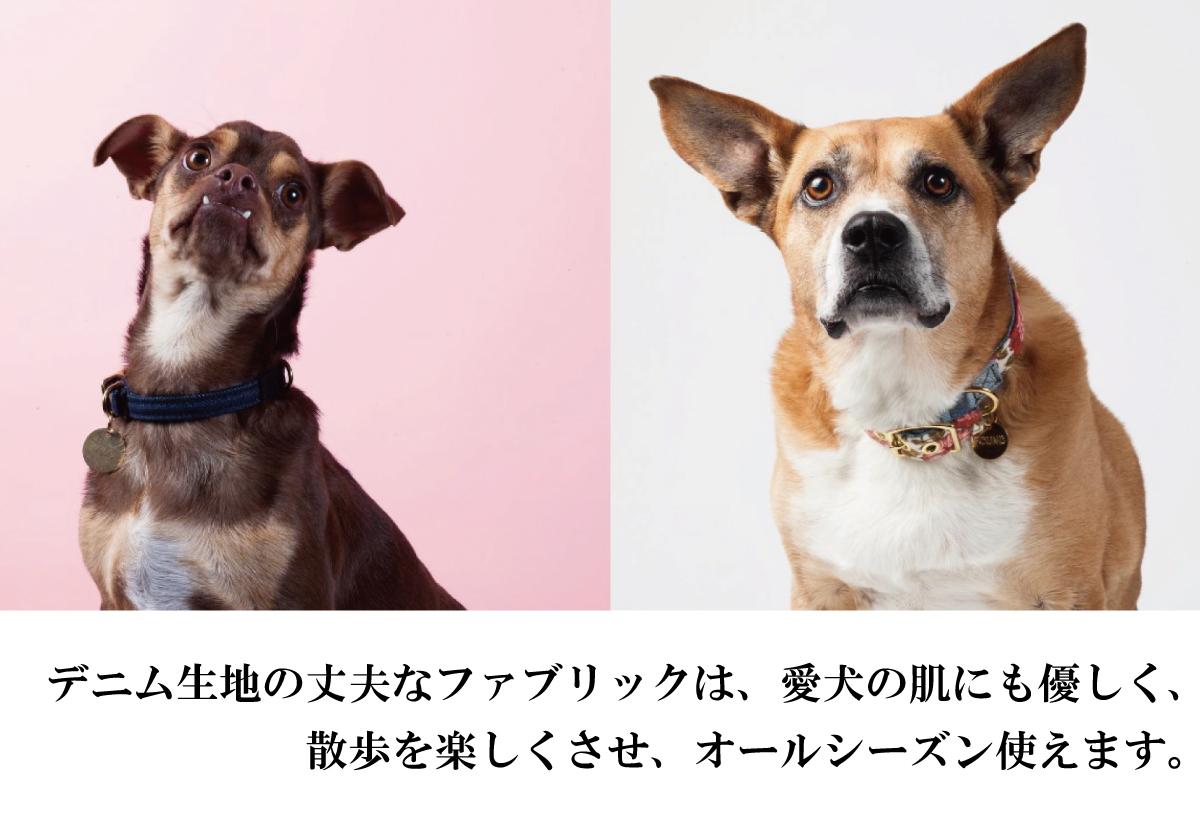 ファウンド・マイ・アニマル ヴィンテージ デニム 首輪(カラー)。デニム生地の丈夫なファブリックは、愛犬の肌にも優しく、散歩を楽しくさせ、オールシーズン使えます。