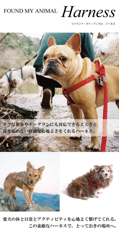 ファウンド・マイ・アニマル ハーネス。タフな散歩やドッグランにも対応できる丈夫さと首を痛めない快適な心地よさをくれるハーネス。愛犬の体と日常とアクティビティを心地よく繋げてくれる。この素敵なハーネスで、とっておきの場所へ。