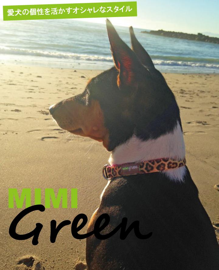 Mimi Green ミミ・グリーン01