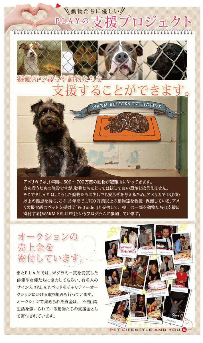 PLAYのベッドは避難所で暮らす動物を支援することができます。