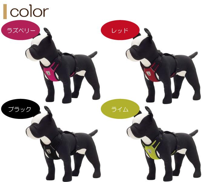 色はラズベリー・レッド・ブラック・ライム