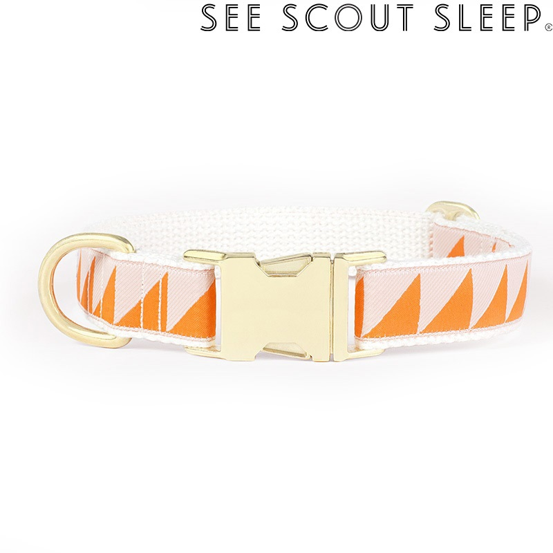 SeeScout Sleep NiceGrill 首輪