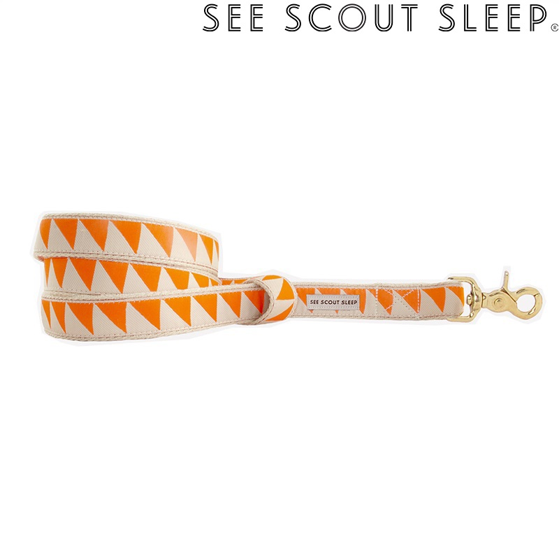 SeeScout Sleep NiceGrill スタンダードリード