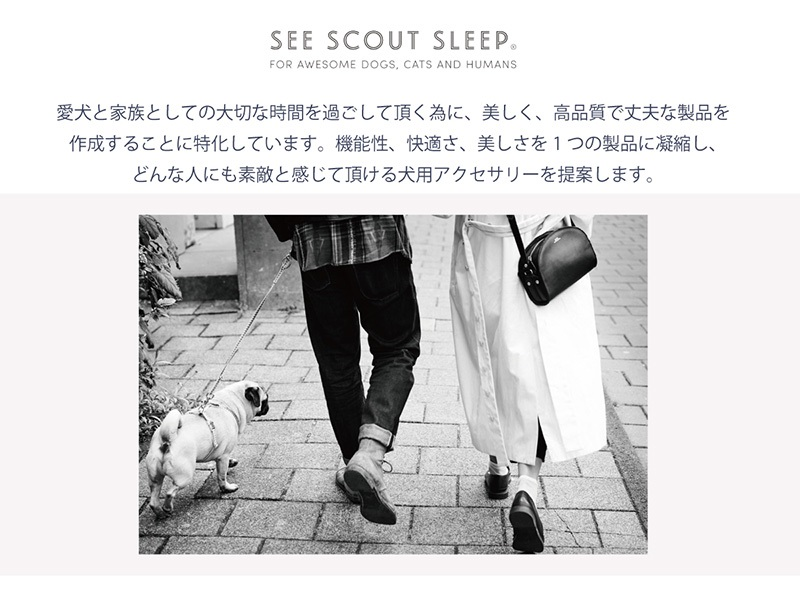 SeeScout Sleep NiceGrill