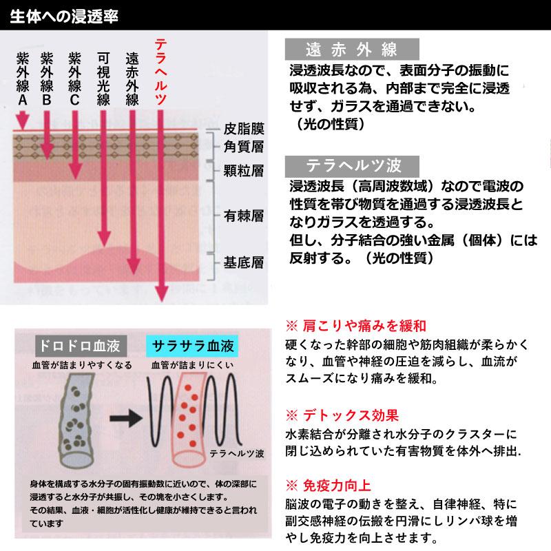 生体への浸透率